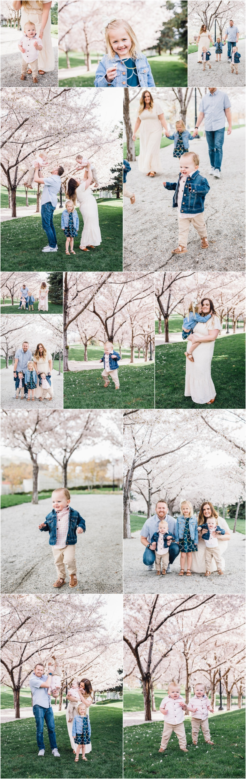 Utah State Capitol Cherry Blossoms Family Photographer